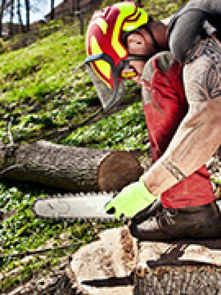 Chainsaw Safety Training (OSHA)